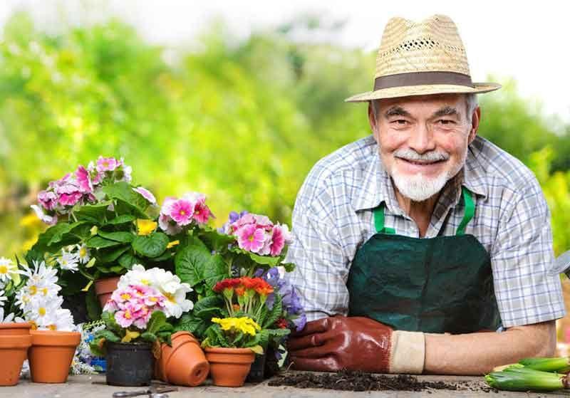 Nuevas terapias: Trabajar la tierra, cosechar una mente sana