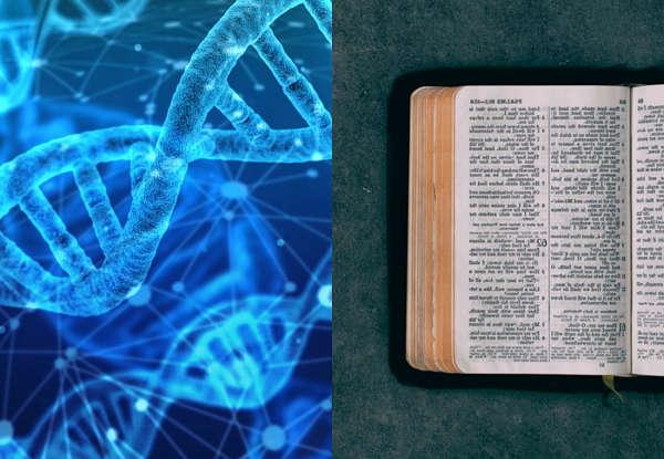 O hardware e software dos genes